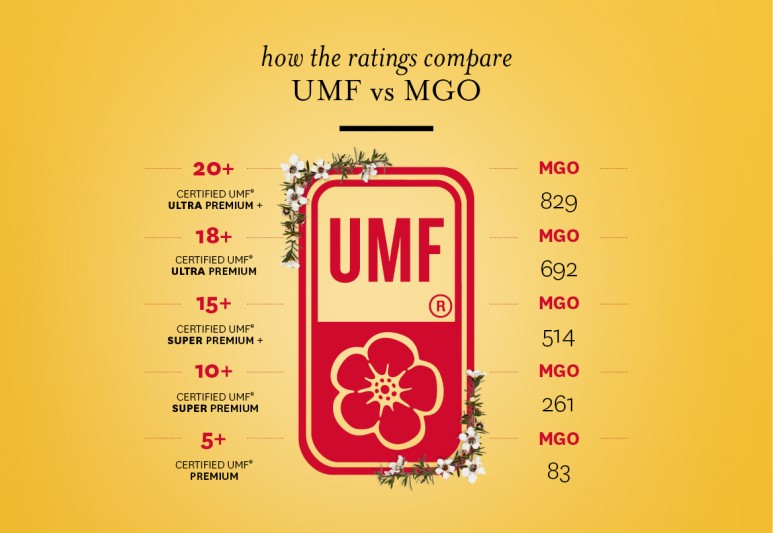 02308-article-umf-vs-mgo.jpg