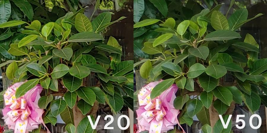 LG V50.jpg