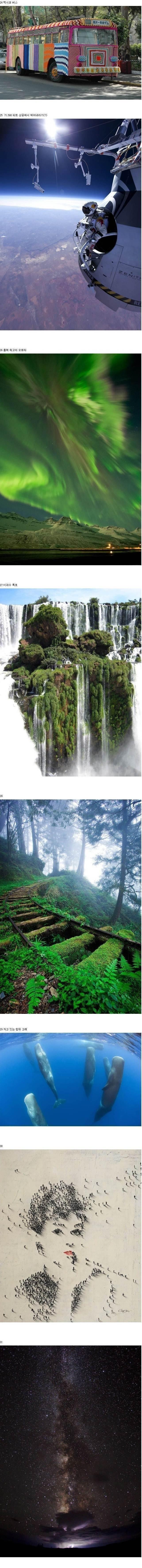 신기한사진들3.jpg
